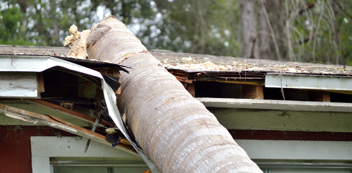 Emergency Roof Repair Services in Dayton, Ohio