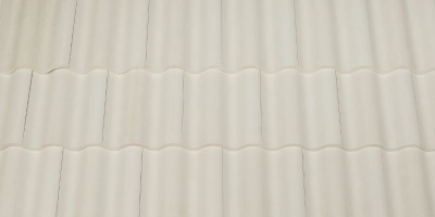 Brava White Roof